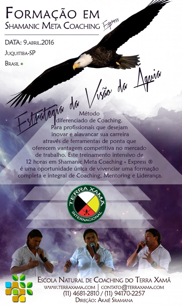 SHAMANIC_META_COACHING_ABRIL_2016